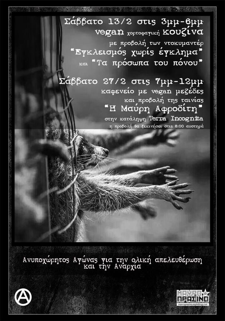 teliko_raccoons2